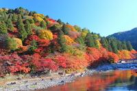 Autumn leaves of Korankei River Stock photo [2239136] Korankei