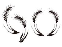 Wheat illustrations Wheat,