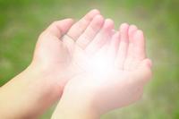 Shining palm Stock photo [2241272] Hand