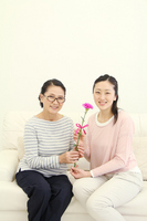 Good friend mother and daughter carnation, Mother's Day Stock photo [2246807] Mother