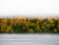 Autumn leaves of Laurentian Plateau Stock photo [2361159] Laurentian