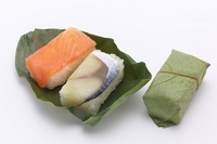 Persimmon leaf of sushi stock photo