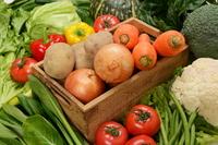 Vegetables set Stock photo [2373476] Vegetables