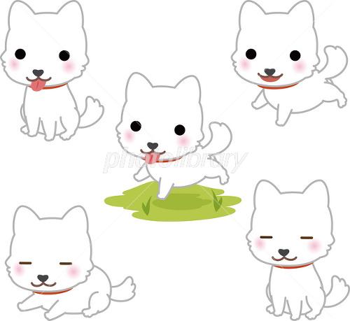 かわいい白い犬 イラスト素材 2489294 フォトライブラリー