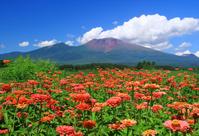 Mt. Asama Stock photo [2486229] Mt.