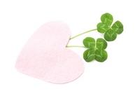 Four-leaf clover Stock photo [2486690] Clover