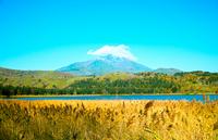 Seen from swamp Otatomari Rishiri Stock photo [2489923] Hokkaido