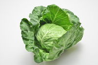 Cabbage Stock photo [2491661] Spring
