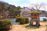 Landscape of early spring of Nagaoka Yukyuzan park Stock photo [2491946] Nagaoka