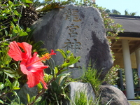 Hibiscus and Ryugu Shrine Stock photo [2493299] Kagoshima