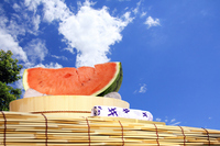Summer of watermelon and blue sky Stock photo [2614800] Watermelon