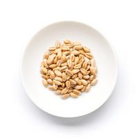Of domestic wheat crude barley Stock photo [2618272] Wheat