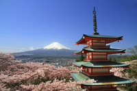 Fuji and five-story pagoda Stock photo [2618543] Mt.