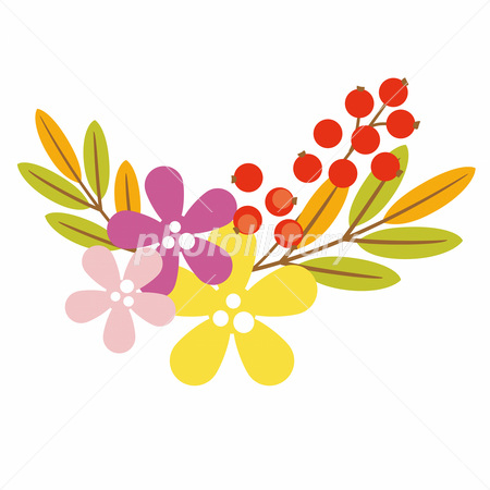 秋の花と赤い実 イラスト素材 2710912 フォトライブラリー