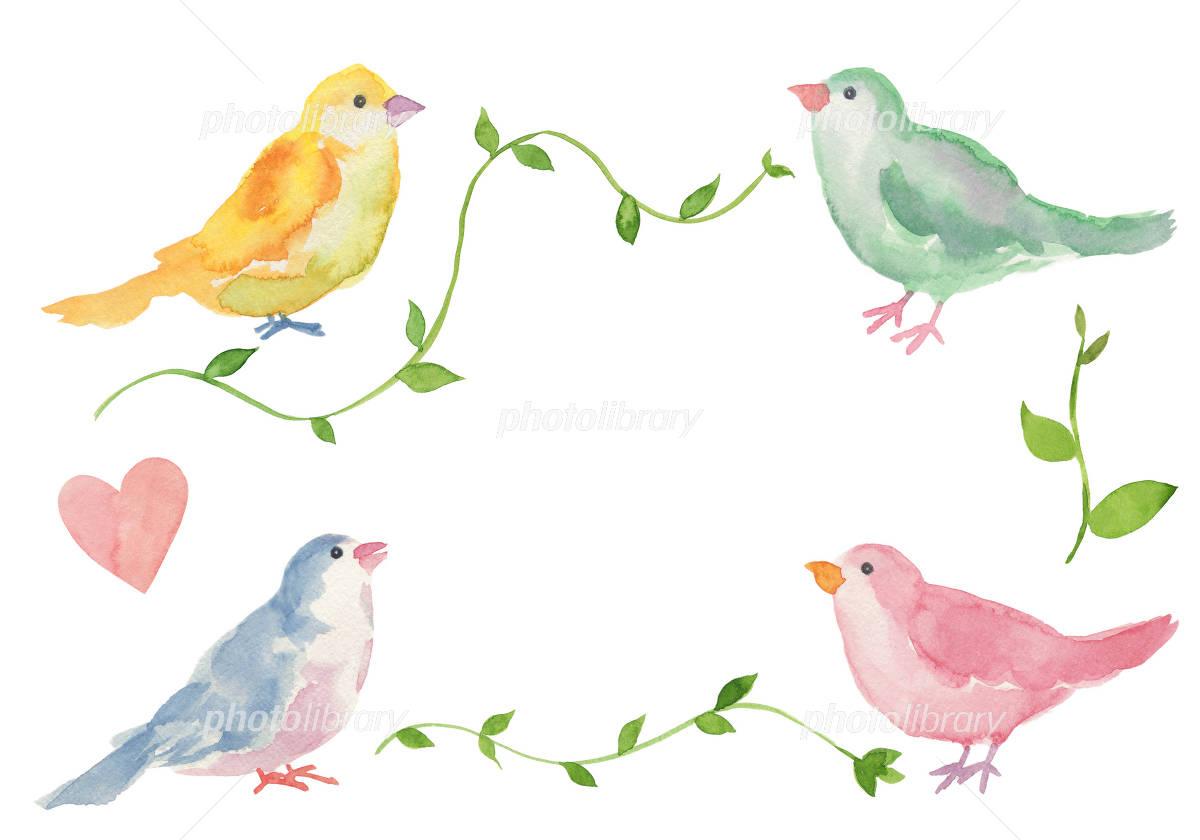 かわいい小鳥のメッセージカード イラスト素材 2790504 フォト