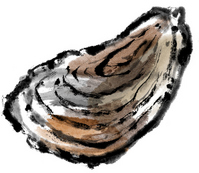 Oyster [2785759] Oyster