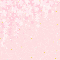Weeping cherry tree shade overlaid Washi [2880022] Cherry