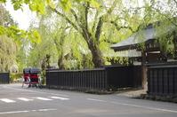 Old samurai residences Stock photo [2880868] Spring