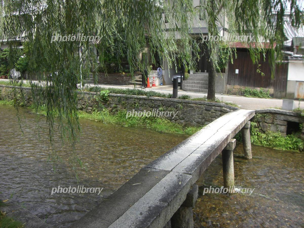 Kyoto Ipponbashi Photo