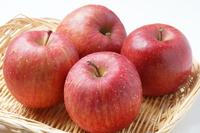 Aomori apples Stock photo [2960460] Aomori