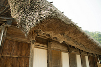 Thatched roof Stock photo [2963089] Thatched