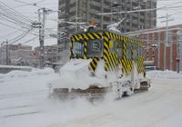 Sasara Stock photo [2963381] Hokkaido