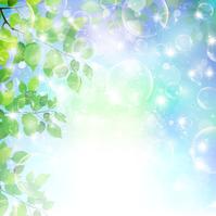 [3040908] Leaf