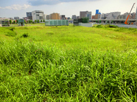 Landscape with a vacant lot near the new Takashima Station Stock photo [3047617] Landscape