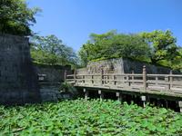 Moat of Kagoshima Castle leading Stock photo [3128219] Kagoshima