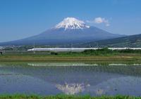 Shinkansen Fuji Stock photo [3133022] Mt.