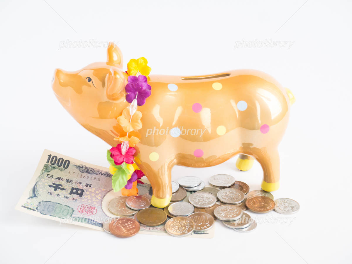 Piggy bank pig Photo