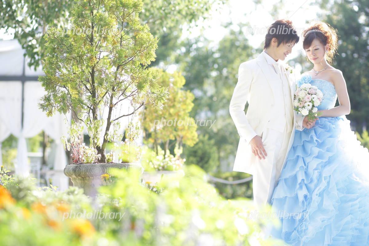 Wedding sunny Photo