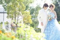 Wedding sunny Stock photo [3236271] Wedding