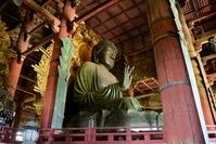 Great Buddha of Nara stock photo