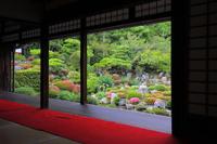 Tōji-in early summer of frame garden Stock photo [3242560] Garden