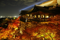 Kiyomizu-dera night admission stock photo