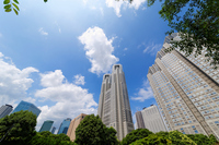 Metropolitan Government building and skyscrapers that blue sky spreads Stock photo [3335500] Tokyo