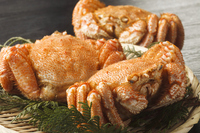 Hair crab Stock photo [3338215] Hokkaido