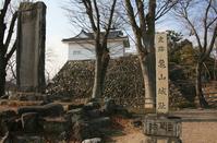 Kameyama Castle Stock photo [3518992] Kameyama