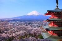 View from NIIKURA Asama Shrine Stock photo [3733800] Temple