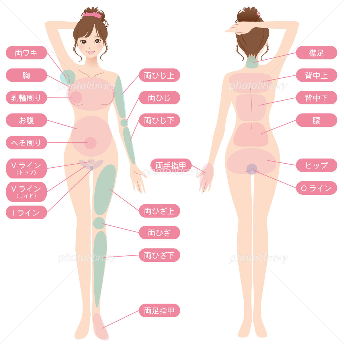 Beauty relationship female hair loss point イラスト素材