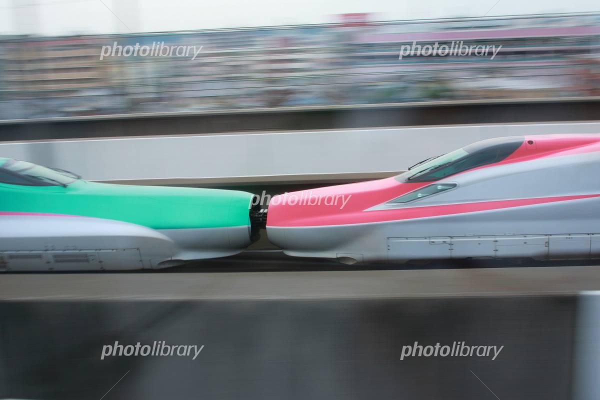 東北新幹線 E6系スーパーこまち E5系はやぶさ連結 写真素材 フォトライブラリー Photolibrary