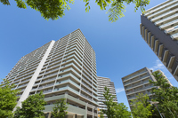 Fresh green and high-rise apartment Stock photo [3845321] Building
