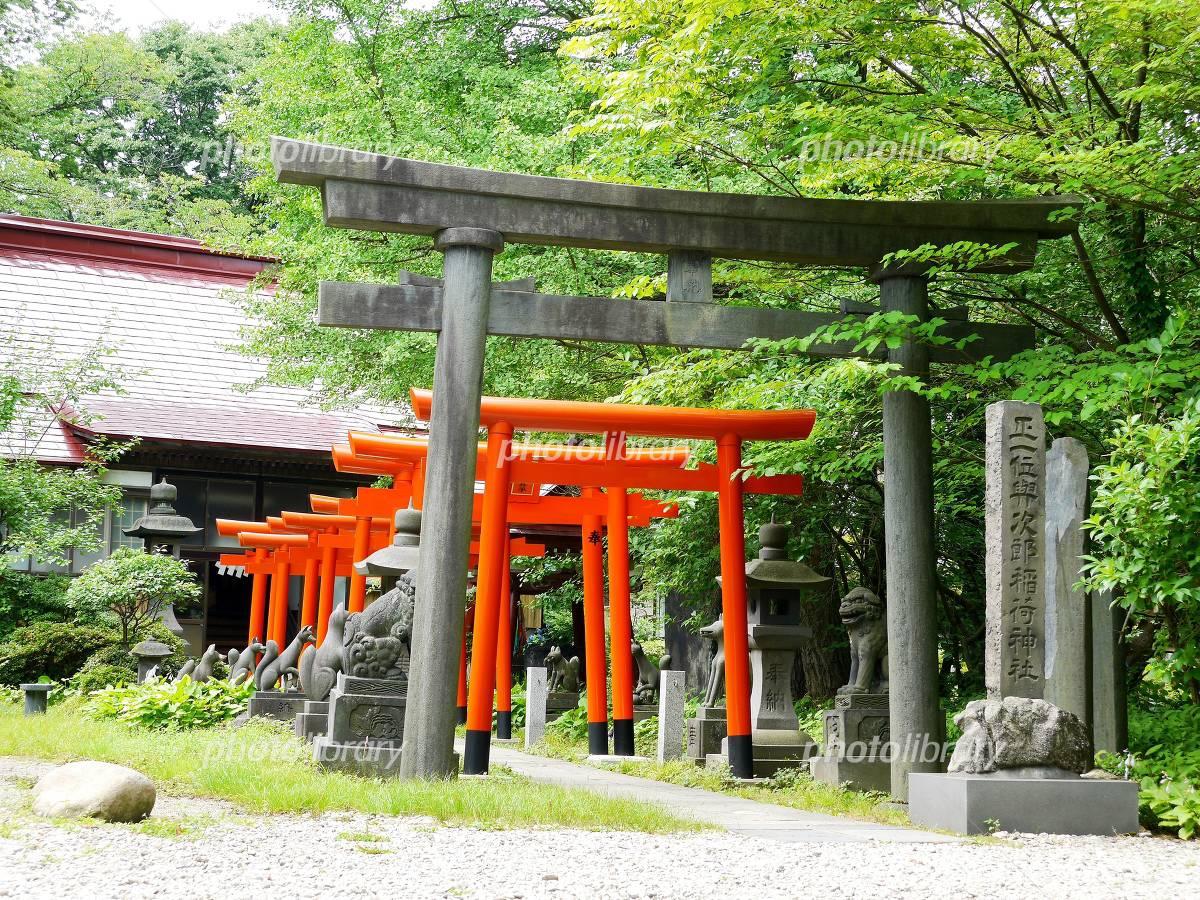与次郎稲荷神社 写真素材 [ 3952...