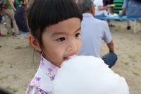 Cotton Candy Stock photo [3958715] cotton