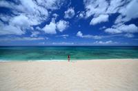 ハワイのノースショア