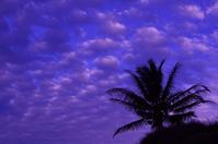 ハワイの朝焼け