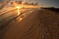ラニカイビーチの朝