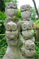 Torinokosan friend of the upper shrine Owl Stock photo [4113459] owl