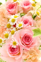 Flower Arrangement Background Stock photo [4168814] flower